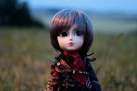 Ju Doll