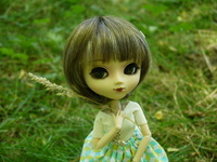 rhododendrovesdolls