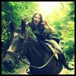 HorsesHeaven