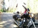 motokospyder