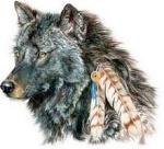 lobo celta