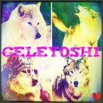 celeyoshi