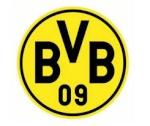 BVB134