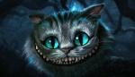 Potter Cat