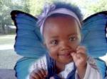 Blaquebutterfly