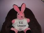 cg.lannion/fio