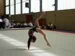 Gymnastee