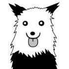 perro_