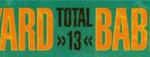 total_13