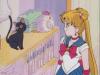 Sailor Moon Captures Sailor37