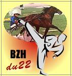 bzhdu22