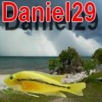 Daniel29