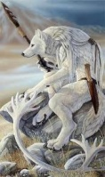 wolf116