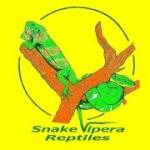 Snakevipera