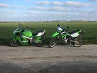 Monstre vert 14