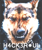 H4cK3R*uL
