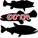 Exotom