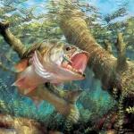 Le coin du pêcheur débutant 3957-3