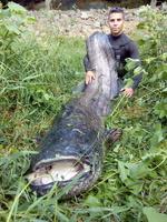 Vidéos et photos de pêche 4819-31