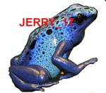 jerry_17