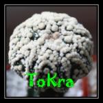 tokra