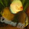 Discus56
