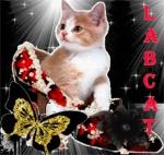 LabCat