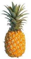 PineappleEmperor
