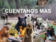 :animals: