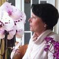 passion_orchidées