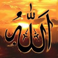 muslim1980