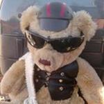 Bad bear Ted