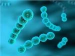 microbionana