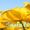 Sana96
