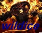 .WilDicE*
