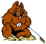 Marmotte28