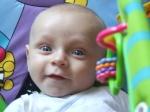 recherche d'une assistante maternelle par des parents 3166-47
