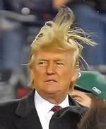 Donald.T