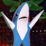 sharkyperry