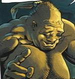 Gayon Baloo