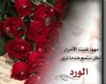 غيدا محمد
