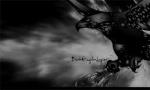 Dark Eeagle