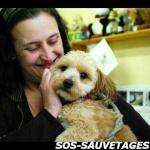 SOS-SAUVETAGES
