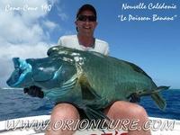 Vincefish
