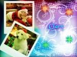Clary Violett