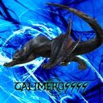 calimero9999