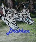 Drakhan