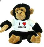 Maximilien Mayeult
