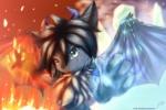 WolfDragon