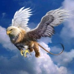 the fire eagle